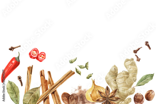 Colorful spices border for cooking designs
