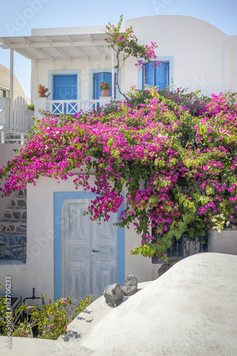 Fotografie, Obraz  typical house at Oia Santorini Greece