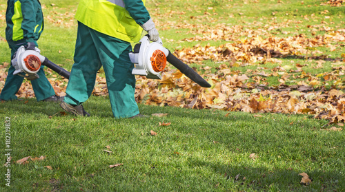Workers cleaning fallen autumn leaves with a leaf blower Canvas Print