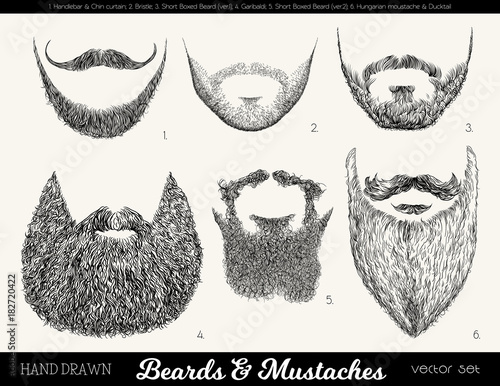 Surprising Vector Set With Beards And Mustaches Hand Drawn Illustration With Natural Hairstyles Runnerswayorg