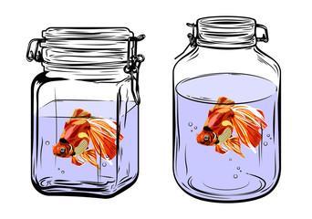 Goldfish in a glass jar