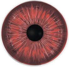 Crimson Eye - Vampire Eye Iris - High Detailed Vector Illustration