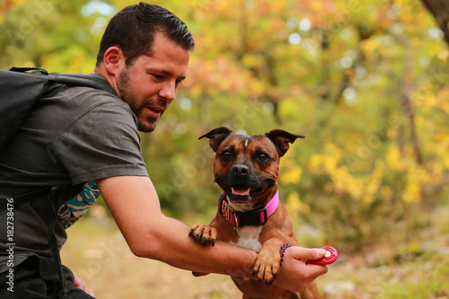 Fotografia  Staffordshire bull terrier and man
