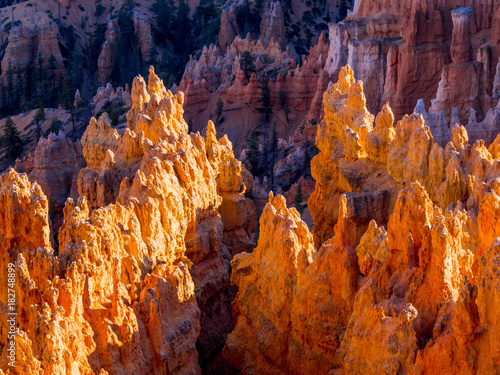 Keuken foto achterwand Rood traf. The famous Bryce Canyon National Park in Utah