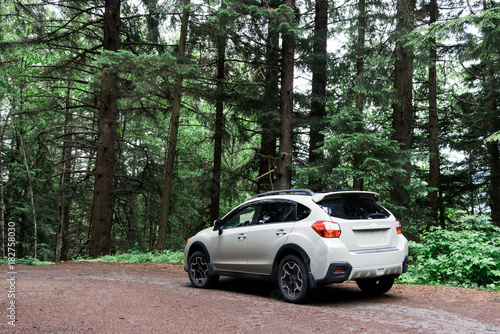 Obraz 4x4 white car on dirt road in forest trees - fototapety do salonu