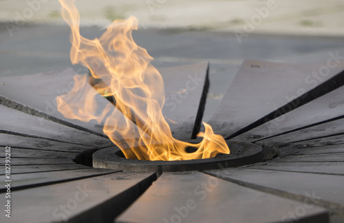 Fotografia  Burning an eternal flame in a circle with petals