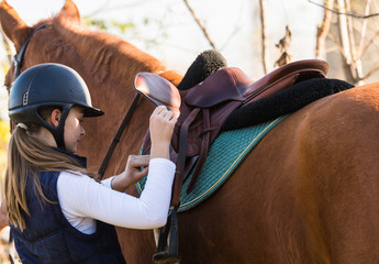 Young pretty girl preparing horse for riding