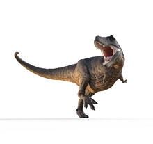 Trex White On White Background