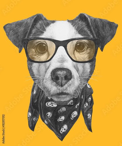 Fotografie, Obraz  Portrait of Jack Russell with glasses and scarf