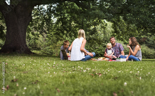 Fotomural Family Generations Picnic Togetherness Relaxation Concept
