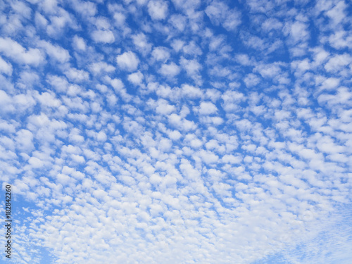 ひつじ雲(altocumulus cloud) Wallpaper Mural