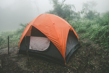 Camping And Tent Under The For...