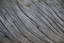 Drift Wood Texture Found In Ar...