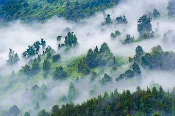 Patagonia Landscape, Puyuhuapi, Chile
