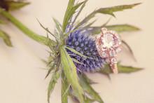 Morganite Gemstone Engagement Ring On Natural Romantic Background