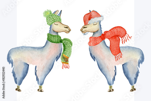 1963ad736dc Christmas lama illustration with Santa hat and scarf Winter watercolor  animals Cute kids illustration perfect for greeting or post cards
