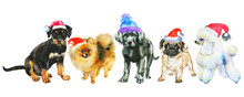 Watercolor Dogs In Christmas H...