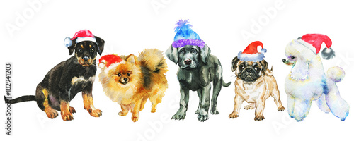 Watercolor Dogs In Christmas Hats Painting New Year Banner On White Background Hand Drawn Cute Pets Buy This Stock Illustration And Explore Similar Illustrations At Adobe Stock Adobe Stock