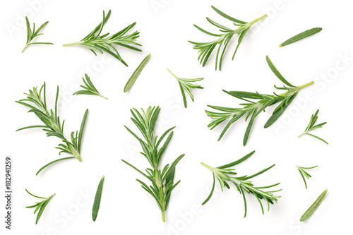 Leinwand Poster Rosemary Isolated on White Background