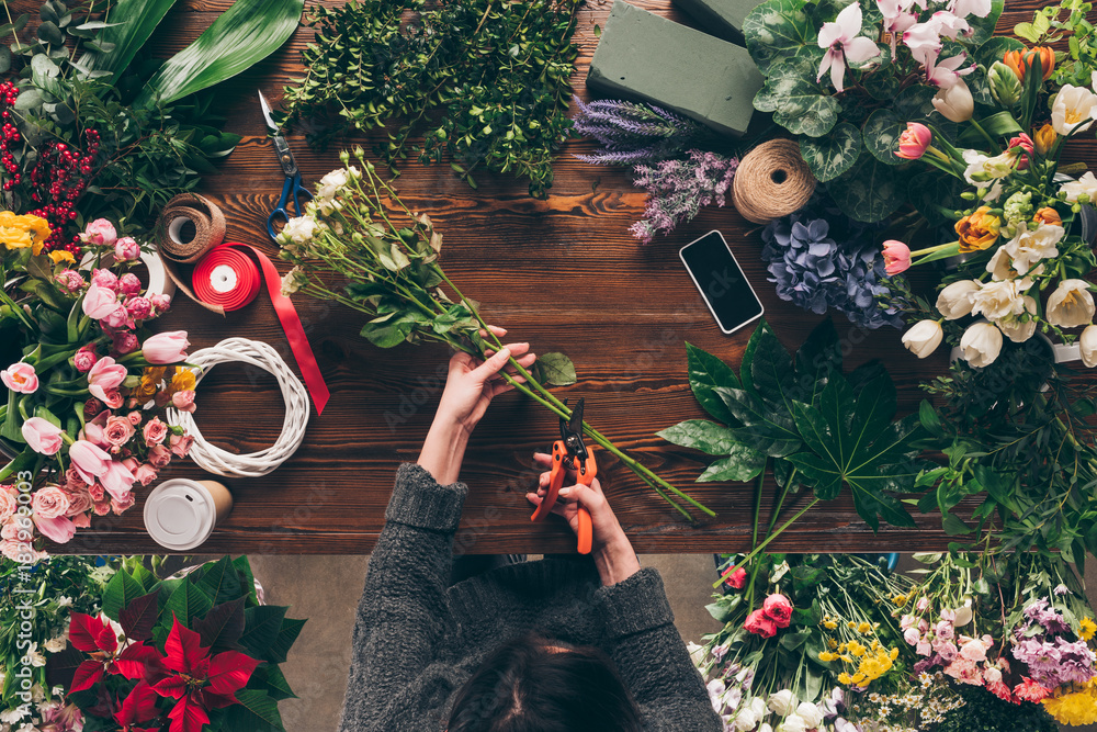 Fototapeta cropped image of florist cutting stalks of roses with pruner