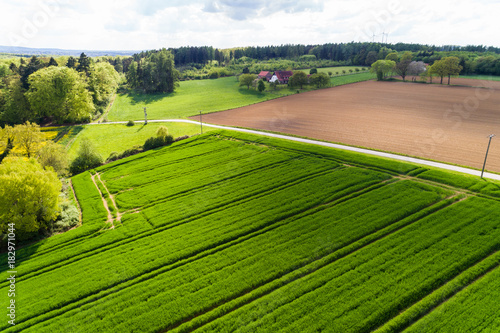 Poster Lime groen Landschaft in Deutschland