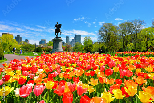 Photo Boston Public Garden tulips and George Washington Statue on a Beautiful Spring D