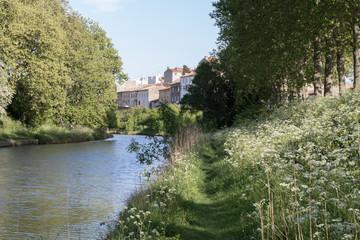 Fototapeta na wymiar Le Canal du Midi à Carcassonne