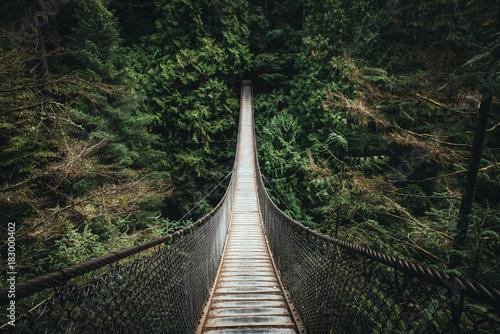 Canvas Prints Bridge Lynn Valley Bridge North Vancouver Canada