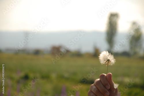 Fototapeta Natura Pisać Egirdir Jezioro