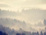 Fototapeta Na ścianę - Magnificent heavy mist in landscape. Autumn creamy fog in landscape.