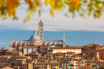 Obraz na Szkle Miasta Beautiful view of Dome and campanile of Siena Cathedral, Duomo di Siena, and Old Town of medieval city of Siena in the sunny day through autumn leaves, Tuscany, Italy
