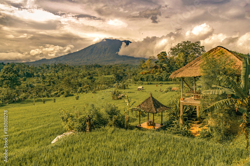 Photo  rice field with traditional house balinese in amed