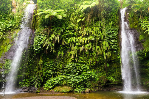 twings of waterfall in bali. indonesia Poster