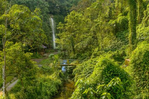 Photo  little waterfall in garden of eden in bali indonesia