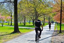 Spring In Boston Esplanade