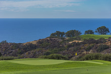 Golf Course At Torrey Pines La...
