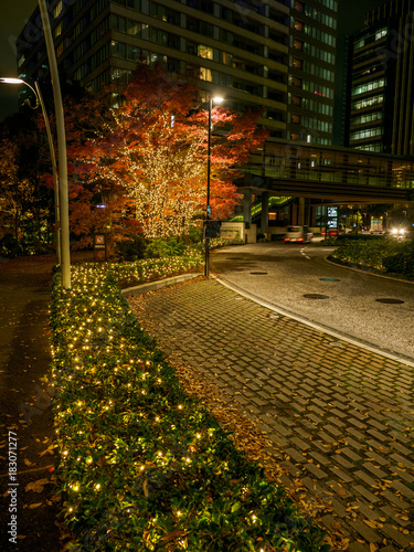 Obraz na dibondzie (fotoboard) Tokyo Midtown Illumination
