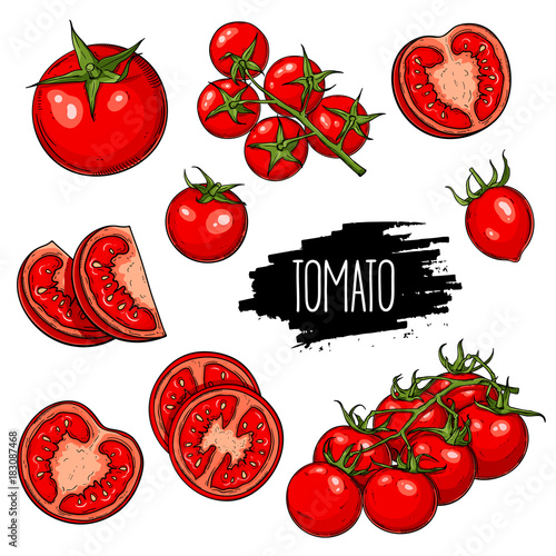 Hand drawn vegetable set of tomatoes, slices, halves and cherry tomatoes isolated on white background. Vector sketch illustration.