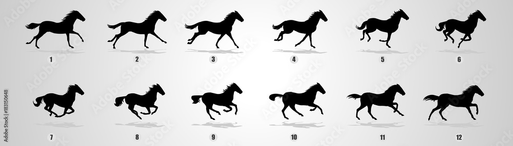 Obraz Horse Run cycle, Animation, Sprites, Sprites sheets, Animation frames, sequence,  fototapeta, plakat