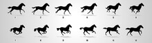 Horse Run Cycle, Animation, Sp...