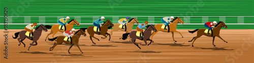 Horse racing, Racecourse, Jockey