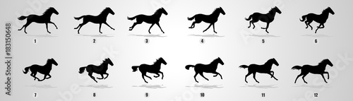 Horse Run cycle, Animation, Sprites, Sprites sheets, Animation frames, sequence, Wallpaper Mural