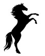 rearing up black mustang  - standing horse side view vector silhouette