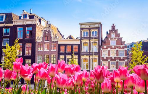 tradycyjne-stare-budynki-i-tulipany