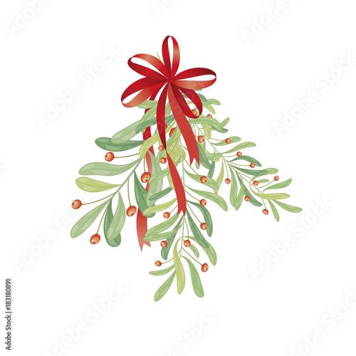 Fotografie, Obraz  Christmas sprig of mistletoe