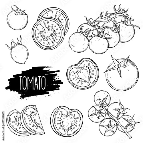 Hand drawn tomato set. Tomatoes, slices, halves, cherry tomatoes and bunch isolated on white background. Outline ink slyle sketch. Vector coloring illustration.