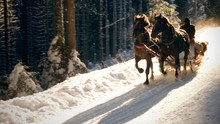 Sleigh Ride In Motion On The S...