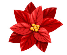 Beautiful Red Poinsettia Flower Christmas Decoration Christmas Ornament Vector Illustration Isolated On White Background