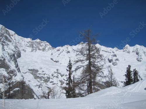 Fotobehang Wintersporten neve
