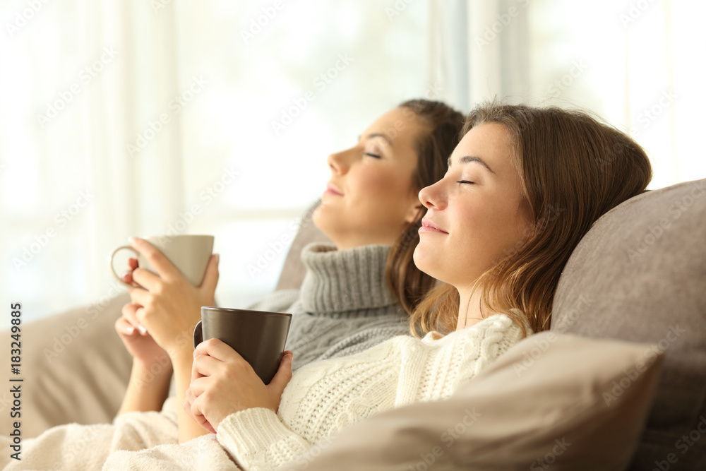 Fototapety, obrazy: Roommates relaxing in winter on a couch
